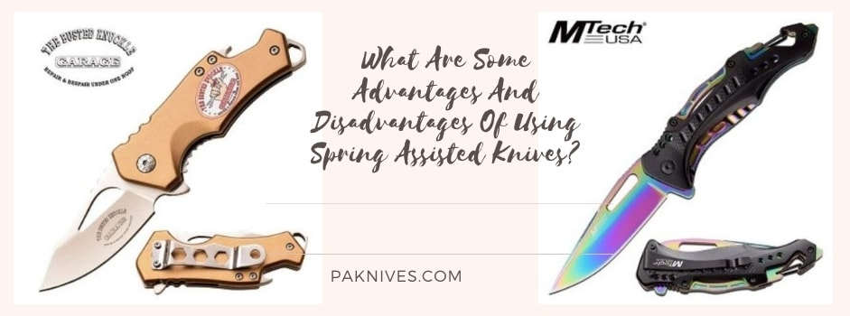 What Are Some Advantages And Disadvantages Of Using Spring Assisted Knives?